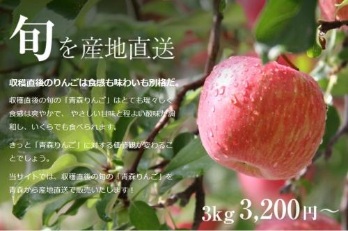 りんごの惑星